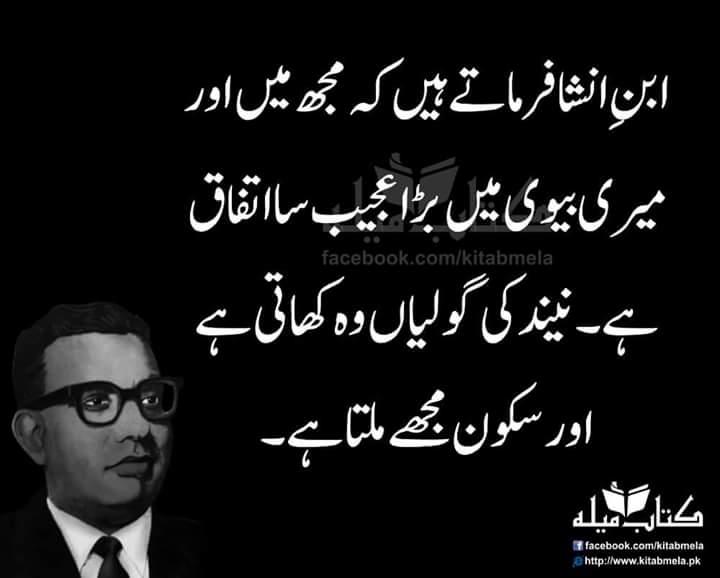 Urdu-Ibne Insha